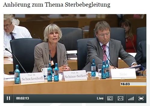 Zur Anhörung bitte Bild anklicken. (Screenshort: bundestag.de)